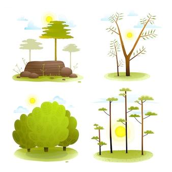 Collezione di alberi e cespugli foresta paesaggio