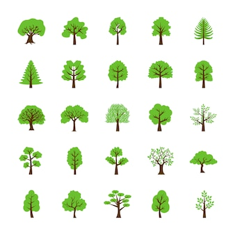 Set di icone piane di alberi