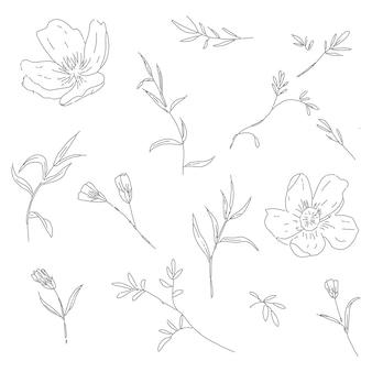Collezione alla moda di elemento floreale di arte linea disegnata a mano con foglie di fiori di ciliegio