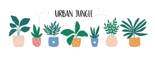 Arredamento casa accogliente alla moda con set di piante da casa tropicale