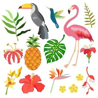Stile piatto oggetto estivo tropicale