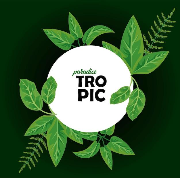 Parola tropic in cornice circolare con foglie piante natura poster