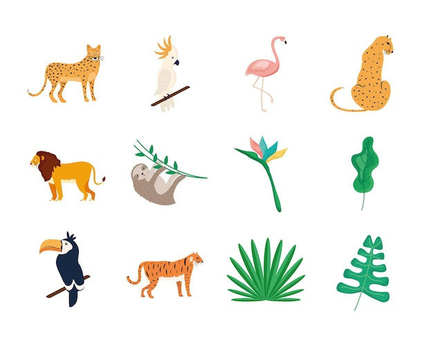 Set di animali tropicali