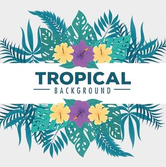 Sfondo tropicale, fiori colori gialli e viola, rami e foglie tropicali, decorazione con fiori e foglie tropicali
