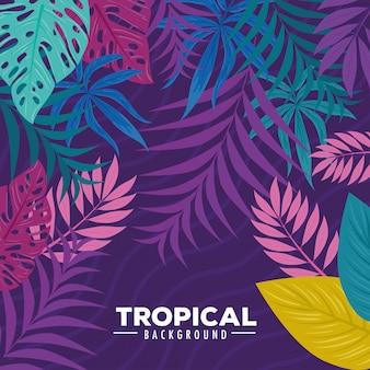 Sfondo tropicale con rami e foglie di piante