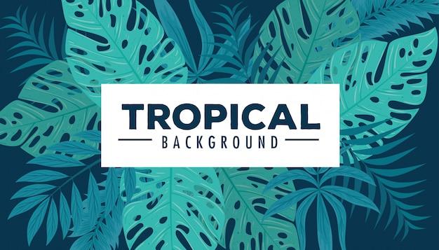 Sfondo tropicale con piante della giungla, decorazione con foglie di palma