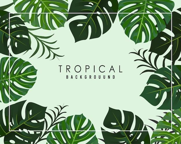 Sfondo tropicale con foglia monstera colore realistico
