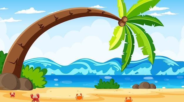 Scena del paesaggio della spiaggia tropicale con un grande albero di cocco