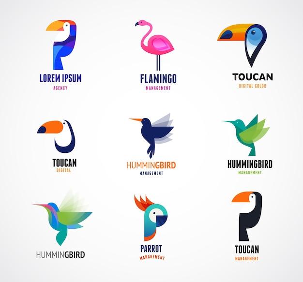 Insieme di loghi di uccelli tropicali