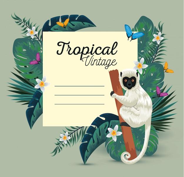 Scheda tropicale con lemure e farfalle con fiori