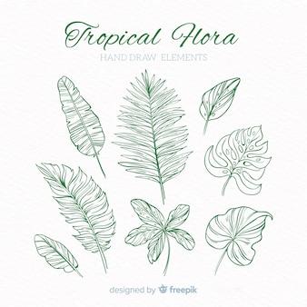 Collezione di elementi di decorazione tropicale