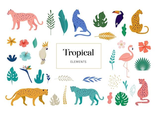 Animali esotici tropicali e uccelli - illustrazione di vettore di leopardi, tigri, pappagalli e tucani. animali selvaggi nella giungla, foresta pluviale