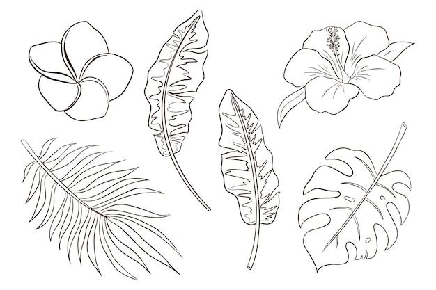 Pagina da colorare di fiori e foglie tropicali. set di piante esotiche disegnate a mano e illustrazioni vettoriali di fiori. foglie di banana, palma e monstera, fiori di ibisco e plumeria. vettore premium