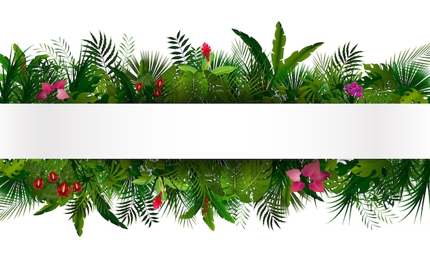 Fogliame tropicale con banner orizzontale