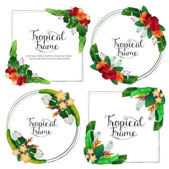 Confine estivo cornice tropicale ibisco frangipani