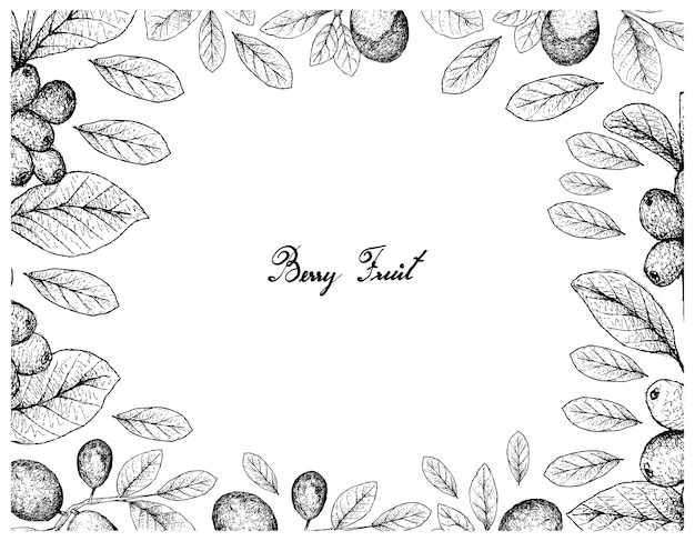Cornice di illustrazione di frutti tropicali di schizzo disegnato a mano
