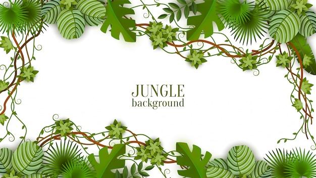 Sfondo verde tropicale e cornice con giungla, viti, foglie e piante esotiche.