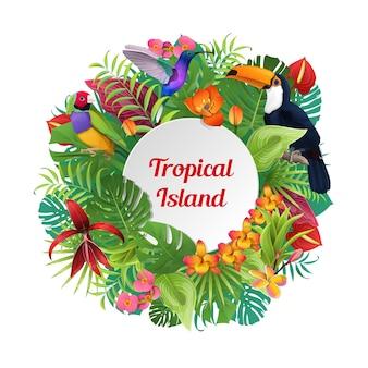 Composizione parola isola tropicale su uccelli rotondi piante e fiori