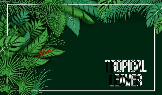 Sfondo di foglie tropicali con piante della giungla