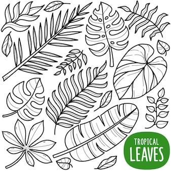 Illustrazione di doodle in bianco e nero di foglie tropicali