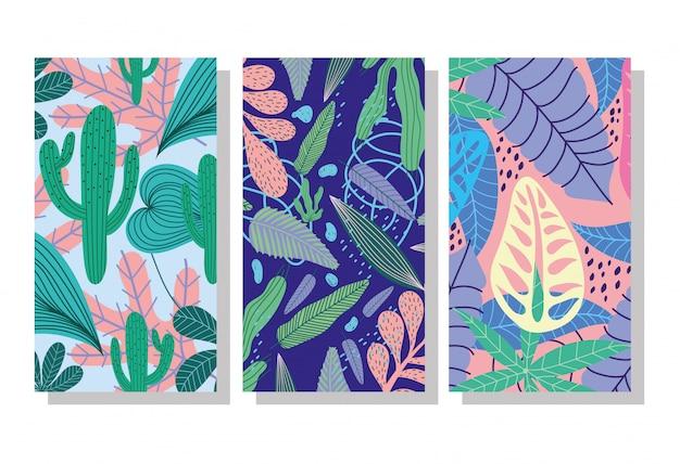 Insegna o modello di copertura floreale botanica esotica del fogliame del cactus delle foglie tropicali