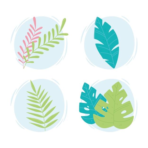 Icone di foglie tropicali Vettore Premium