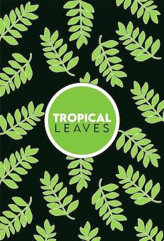 Iscrizione di foglie tropicali con motivo a foglie su sfondo nero