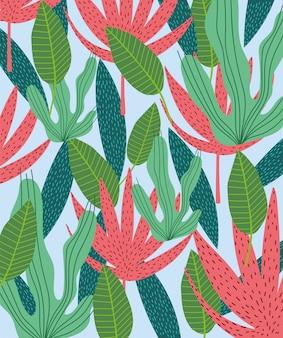 Le foglie tropicali strutturano il fondo verde esotico del fogliame