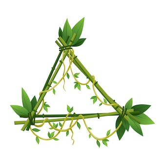 Cornice di liana tropicale, rami di piante della giungla con foglie