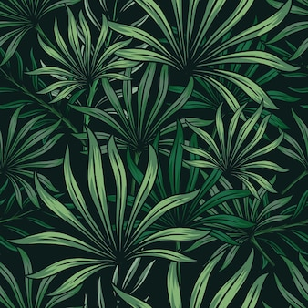 Modello tropicale naturale senza cuciture con foglie di palma verde su sfondo scuro