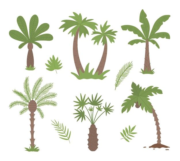 Clipart di palme tropicali Vettore Premium