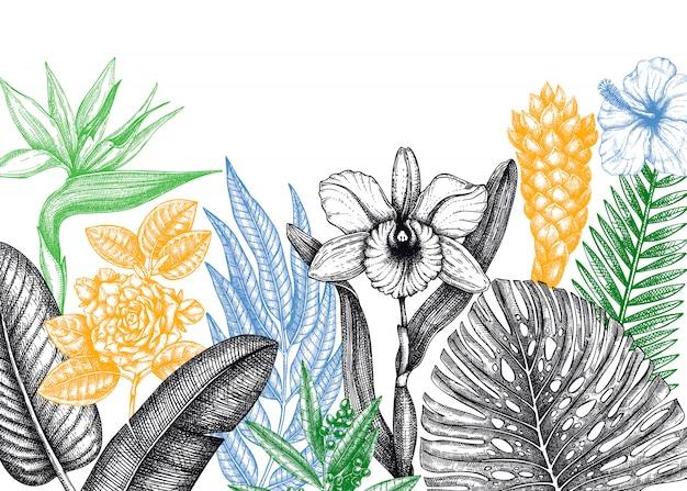Cornice paradiso tropicale. con fiori esotici disegnati a mano e schizzi di foglie di palma. modello di invito o carta di matrimonio tropicale. sfondo vintage di piante esotiche. illustrazione botanica.