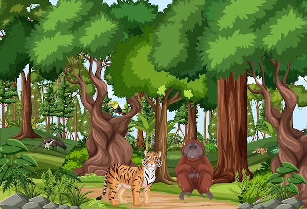 Scena della foresta pluviale tropicale con vari animali selvatici