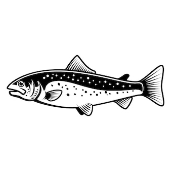 Segno di pesce trota su sfondo bianco. pesca al salmone. elemento per logo, etichetta, emblema, segno. illustrazione