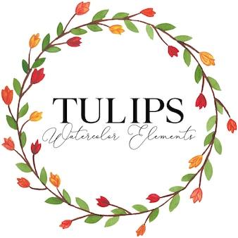 Illustrazione degli elementi dell'acquerello del fiore dei tulipani