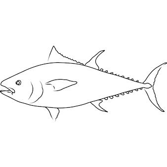 Clipart vettoriali disegnati a mano abbozzati a mano di tonno