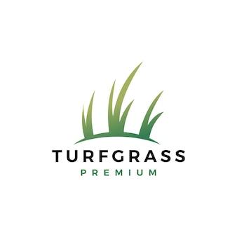 Modello di logo dell'erba del tappeto erboso