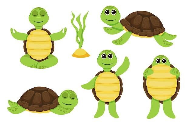 Carattere di tartaruga