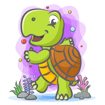 Tartaruga che balla sott'acqua con la faccia felice Vettore Premium