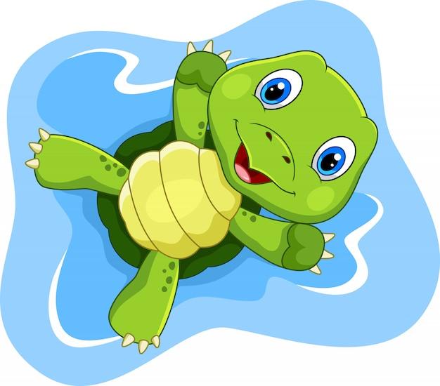 Tartaruga che gioca sull'acqua