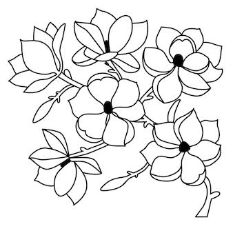 Un ramoscello con fiori di magnolia in stile lineare su sfondo bianco isolato. illustrazione vettoriale.