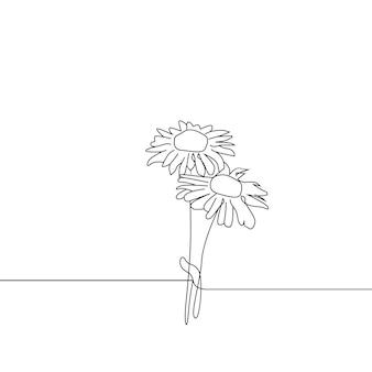 Due fiori di margherita continuano un disegno artistico di una linea
