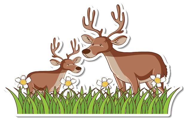 Adesivo due cervi in piedi nel campo in erba