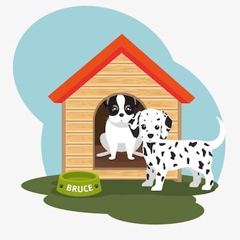 Cibo ciotola due casa del cane
