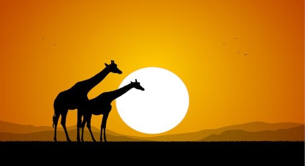 Due giraffe contro il sole al tramonto e le colline. silhouette