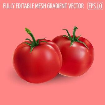 Due pomodori rossi su sfondo rosa.