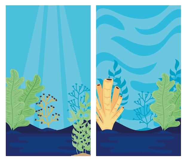 Due mondo sottomarino con illustrazione di scene di paesaggi marini di alghe
