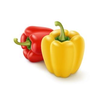 Due peperoni dolci bulgari gialli e rossi isolati