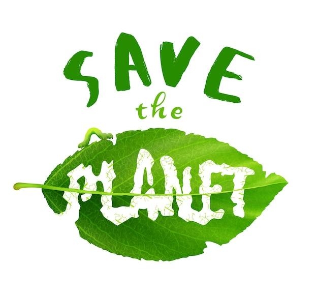 Lettering tipografia eco poster con foglia verde. iscrizione salva il pianeta