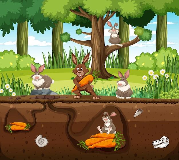 Tana sotterranea degli animali con la famiglia dei conigli